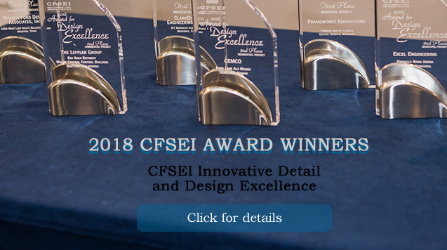 2018 CFSEI AWARD WINNERS